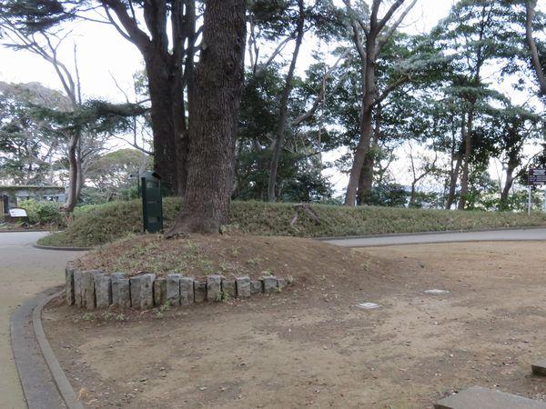 台地に上がったところにある林間広場。正面の大木右下に見える小さい蓋2個がボーリング孔(B-2)と思われる。