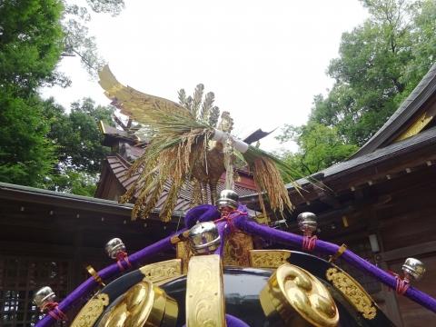 「八坂神社祇園祭」常陸國總社宮境内神輿渡御 (9)