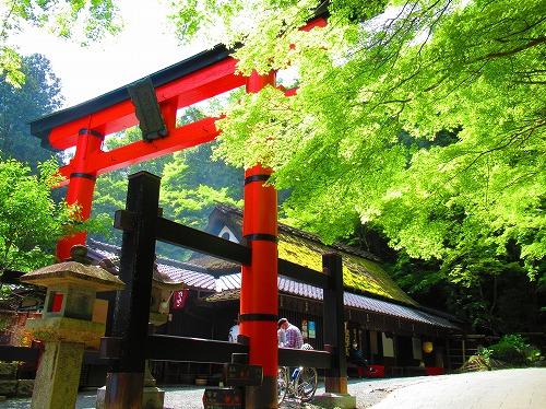 20210503_Arashiyama_08.jpg