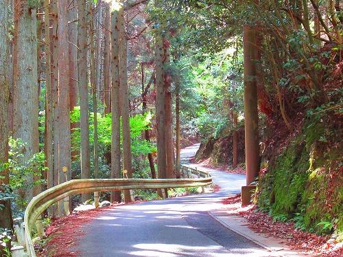 20210503_Arashiyama_09.jpg
