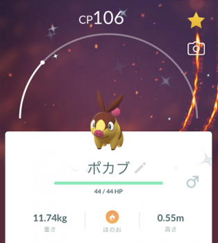 2021 0703 ポケモン