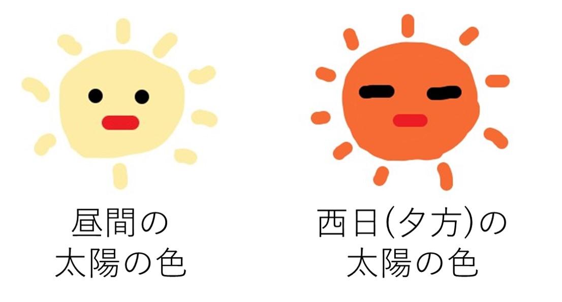 会社員の多肉植物葉(よう) 太陽の色