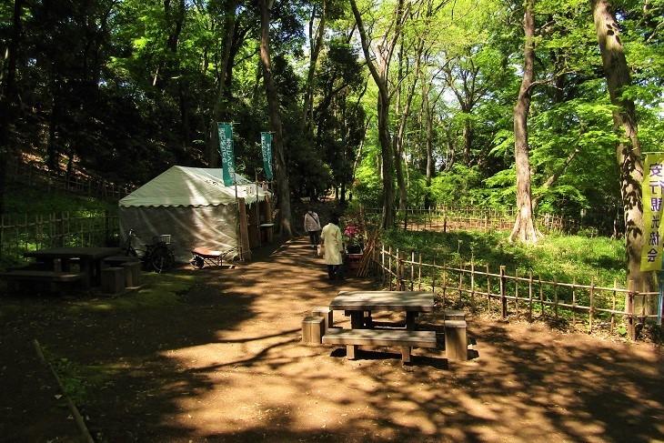 ichirinsou210410-106.jpg